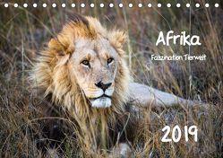 Afrika – Faszination Tierwelt (Tischkalender 2019 DIN A5 quer) von Bentlage,  Horst