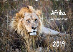 Afrika – Faszination Tierwelt (Wandkalender 2019 DIN A2 quer) von Bentlage,  Horst