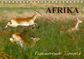 Afrika – Faszinierende Tierwelt (Tischkalender 2021 DIN A5 quer) von Haase,  Nadine