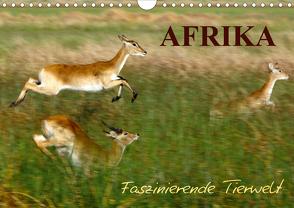 Afrika – Faszinierende Tierwelt (Wandkalender 2021 DIN A4 quer) von Haase,  Nadine