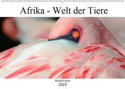 Afrika – Welt der Tiere (Wandkalender 2019 DIN A2 quer) von Jaster,  Michael