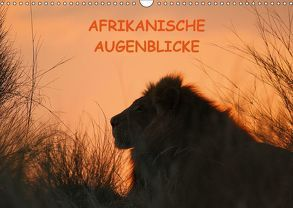 Afrikanische AugenblickeCH-Version (Wandkalender 2018 DIN A3 quer) von Schneeberger,  Daniel