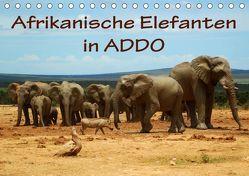 Afrikanische Elefanten in ADDO (Tischkalender 2019 DIN A5 quer) von van Wyk,  Anke