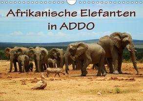 Afrikanische Elefanten in ADDO (Wandkalender 2018 DIN A4 quer) von van Wyk,  Anke