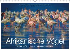 Afrikanische Vögel (Wandkalender 2020 DIN A3 quer) von Tewes,  Rainer