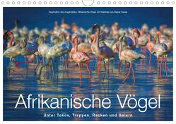 Afrikanische Vögel (Wandkalender 2020 DIN A4 quer) von Tewes,  Rainer