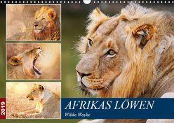 Afrikas Löwen 2019 (Wandkalender 2019 DIN A3 quer) von Woyke,  Wibke