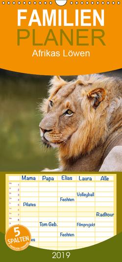 Afrikas Löwen – Familienplaner hoch (Wandkalender 2019 , 21 cm x 45 cm, hoch) von Woyke,  Wibke