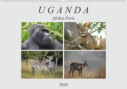 Afrikas Perle Uganda (Wandkalender 2020 DIN A2 quer) von Flori0