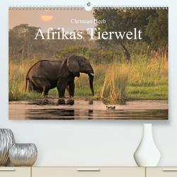 Afrikas Tierwelt Christian Heeb (Premium, hochwertiger DIN A2 Wandkalender 2021, Kunstdruck in Hochglanz) von Heeb,  Christian
