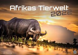 Afrikas Tierwelt – Der Tierkalender – 2022 – Kalender DIN A2