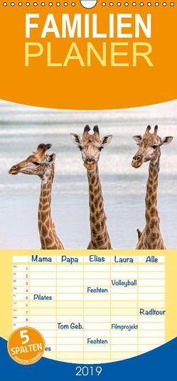 Afrikas Tierwelt: Giraffen – Familienplaner hoch (Wandkalender 2019 , 21 cm x 45 cm, hoch) von Voss,  Michael