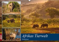 Afrikas Tierwelt: Nashörner (Wandkalender 2021 DIN A2 quer) von Voß & Doris Jachalke,  Michael