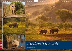 Afrikas Tierwelt: Nashörner (Wandkalender 2021 DIN A4 quer) von Voß & Doris Jachalke,  Michael