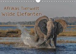 Afrikas Tierwelt – Wilde Elefanten (Wandkalender 2019 DIN A4 quer) von Voss,  Michael