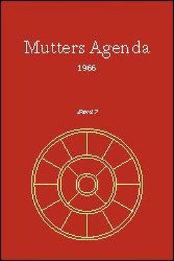 Agenda der Supramentalen Aktion auf der Erde / Mutters Agenda 1966 von Alfassa,  Mirra, Satprem