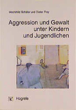 Aggression und Gewalt unter Kindern und Jugendlichen von Frey,  Dieter, Schäfer,  Mechthild