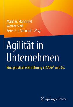 Agilität in Unternehmen von Pfannstiel,  Mario A., Siedl,  Werner, Steinhoff,  Peter F.-J.