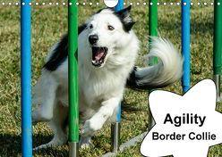 Agility Border Collie (Wandkalender 2018 DIN A4 quer) von homwico,  k.A.