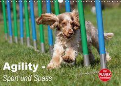 Agility – Sport und Spass (Wandkalender 2019 DIN A3 quer) von Verena Scholze,  Fotodesign