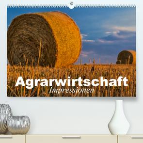 Agrarwirtschaft – Impressionen (Premium, hochwertiger DIN A2 Wandkalender 2021, Kunstdruck in Hochglanz) von Stanzer,  Elisabeth