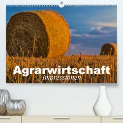 Agrarwirtschaft – Impressionen (Premium, hochwertiger DIN A2 Wandkalender 2020, Kunstdruck in Hochglanz) von Stanzer,  Elisabeth