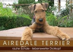 Airedale Terrier (Wandkalender 2018 DIN A3 quer) von Rottmann,  Gaby