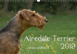 Airedale-Terrier, was sonst! (Wandkalender 2019 DIN A3 quer)