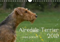 Airedale-Terrier, was sonst! (Wandkalender 2019 DIN A4 quer)