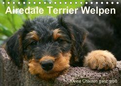 Airedale Terrier Welpen (Tischkalender 2018 DIN A5 quer) von Milau,  Susan