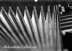Akkordeon – close up (Wandkalender 2019 DIN A3 quer) von Drafz,  Silvia