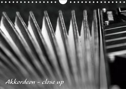 Akkordeon – close up (Wandkalender 2019 DIN A4 quer) von Drafz,  Silvia