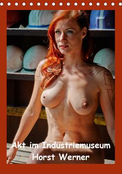 Akt im Industriemuseum (Tischkalender 2020 DIN A5 hoch) von Werner,  Horst