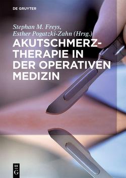 Akutschmerztherapie in der Operativen Medizin von Freys,  Stephan M, Pogatzki-Zahn,  Esther