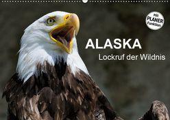 Alaska – Lockruf der Wildnis (Wandkalender 2019 DIN A2 quer) von Wilczek,  Dieter-M.