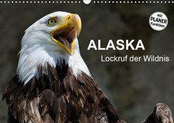 Alaska – Lockruf der Wildnis (Wandkalender 2019 DIN A3 quer) von Wilczek,  Dieter-M.
