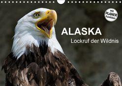 Alaska – Lockruf der Wildnis (Wandkalender 2019 DIN A4 quer) von Wilczek,  Dieter-M.