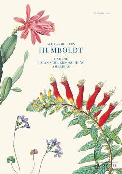 Alexander von Humboldt und die botanische Erforschung Amerikas von Lack,  H Walter
