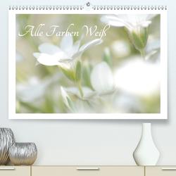 Alle Farben weiss (Premium, hochwertiger DIN A2 Wandkalender 2021, Kunstdruck in Hochglanz) von Fotokullt
