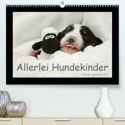 Allerlei Hundekinder (Premium, hochwertiger DIN A2 Wandkalender 2020, Kunstdruck in Hochglanz) von Köntopp,  Kathrin