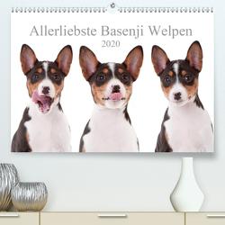 Allerliebste Basenji Welpen 2020 (Premium, hochwertiger DIN A2 Wandkalender 2020, Kunstdruck in Hochglanz) von Joswig,  Angelika