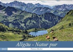 Allgäu – Natur pur (Wandkalender 2019 DIN A2 quer) von Becker,  Thomas