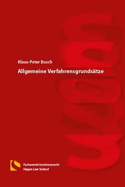 Allgemeine Verfahrensgrundsätze von Busch,  Klaus-Peter