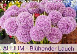 Allium Blühender Lauch (Tischkalender 2019 DIN A5 quer) von Kruse,  Gisela