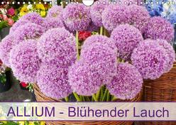 Allium Blühender Lauch (Wandkalender 2019 DIN A4 quer) von Kruse,  Gisela