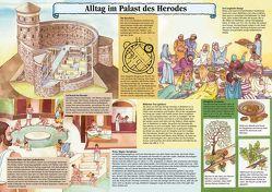Alltag im Palast des Herodes von Bühlmann,  Walter, Egger,  Christine, Schwegler,  Annemarie