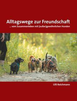 Alltagswege zur Freundschaft von Reichmann,  Ulli