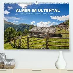 Almen im Ultental (Premium, hochwertiger DIN A2 Wandkalender 2020, Kunstdruck in Hochglanz) von Pöder,  Gert