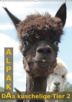 Alpaka, das kuschelige Tier 2 (Wandkalender 2019 DIN A2 hoch) von Brömstrup,  Peter