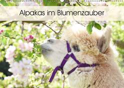 Alpakas im Blumenzauber (Wandkalender 2019 DIN A2 quer) von Rentschler,  Heidi